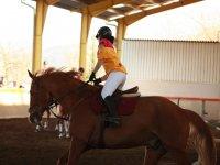 女孩在马棕色小跑