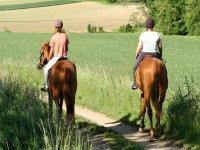 两个人骑马在Urkiola自然公园的森林中散步