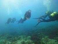Expedición de buzos en la costa de Cádiz