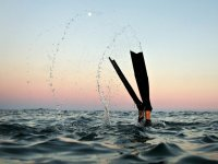 Sumergiendose en el mar al atardecer