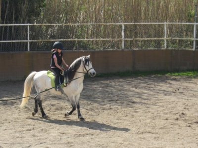 One-month Horse Riding course for kids, Sentmenat