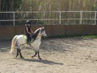 Equitazione per bambini nel corso mensile di Sentmenat