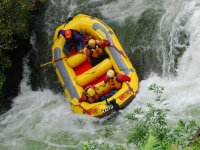 Rafting raft going down the river
