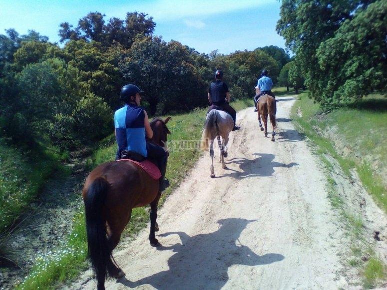Ruta guiada a caballo por el sur madrileño