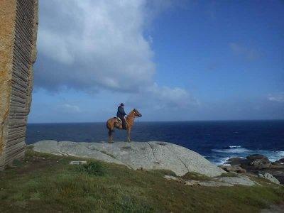 Camino de Santiago on horse