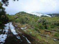 Camino nevado hacia el monte