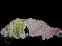 Cueva abierta hacia el bosque
