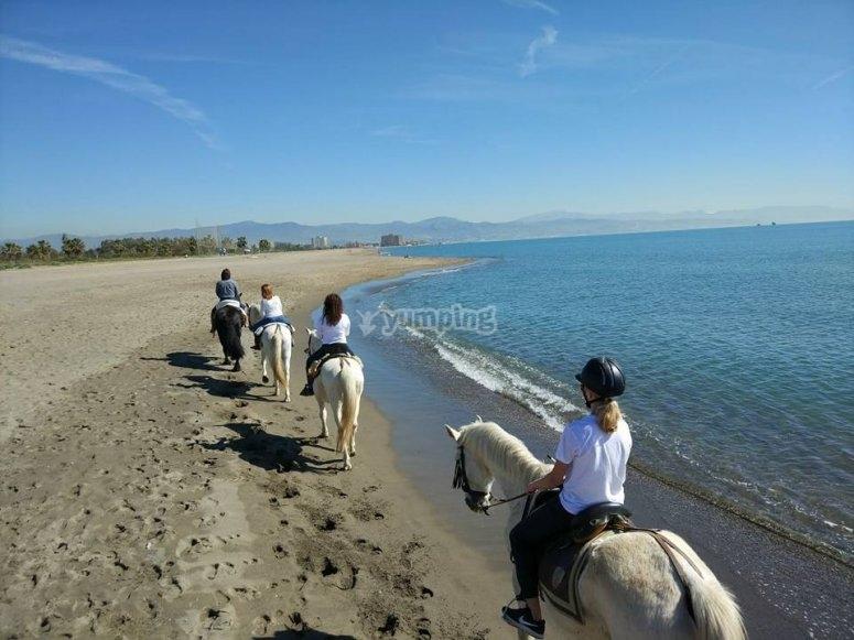 En la Costa del Sol a caballo