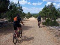COn la bici a todas partes