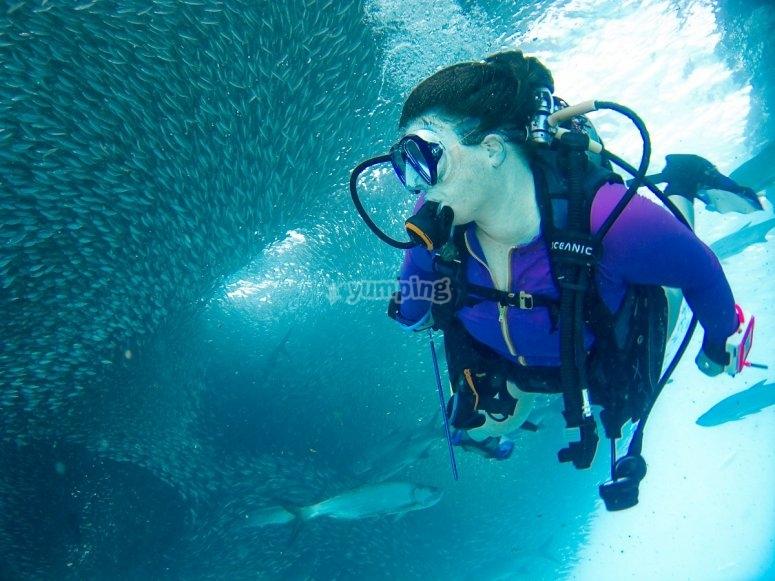 Mujer buceando con el equipo