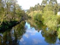 arboleda por el rio