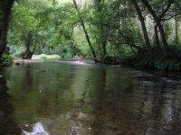 rio aguas tranquilas