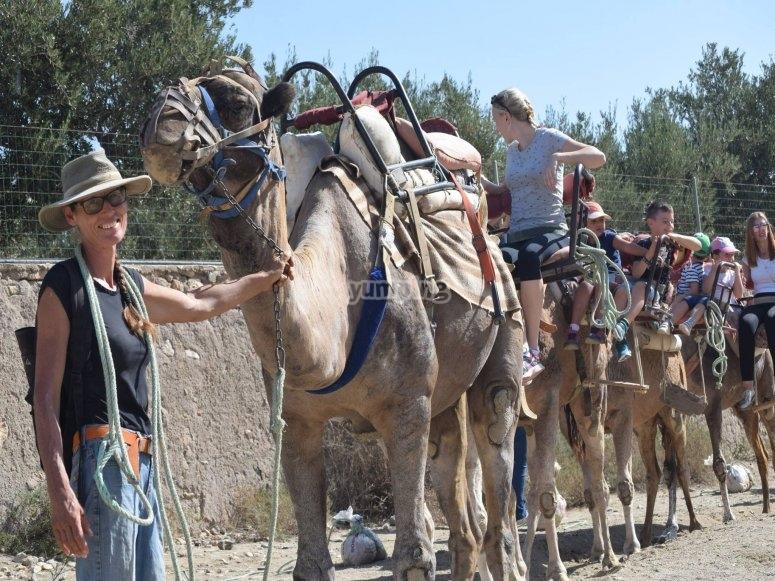 Ruta guiada en Camello por Almería