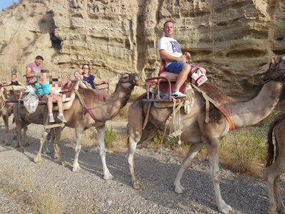 Camel riding route, 35 minutes for adults