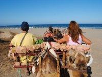 Paseo en camello 35 minutos, Tarifa infantil