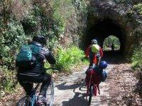 Senda del Oso的自行车租赁服务2小时