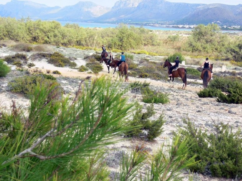 Horseback riding through Menorca