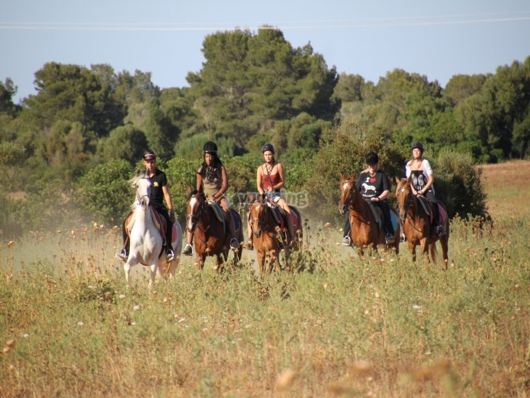 Horseback riding through Son Serra