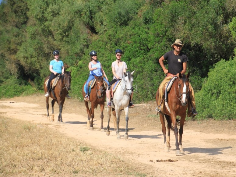 Tour through Son Serra de Marina on horseback