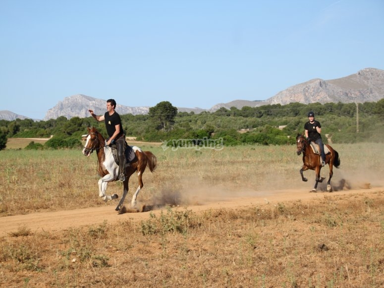 Horseback riding through the field de Mallorca