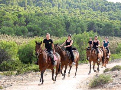 Ruta a caballo de 1 hora en Son Serra de Marina