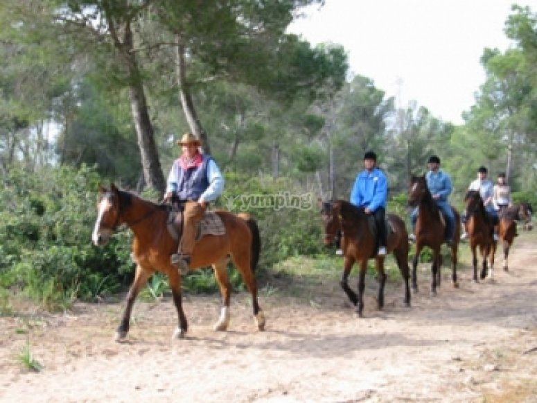Recorrido a caballo en Mallorca