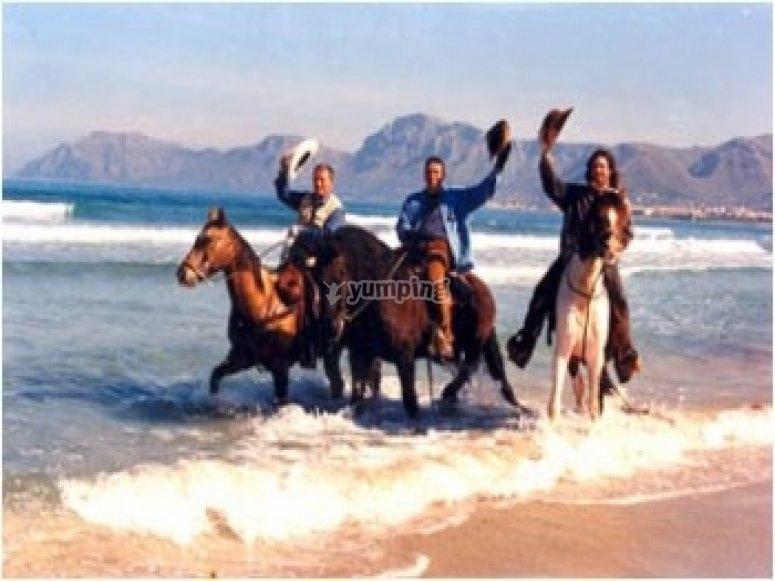 Recorre Mallorca a caballo