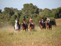 Gita a cavallo nella campagna maiorchina