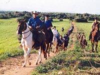 Excursión a caballo de 2 horas