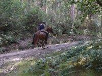 Paseando a caballo en Negreira