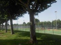 休息区四周绿树成荫大池-999之间 -  aulajoven标志