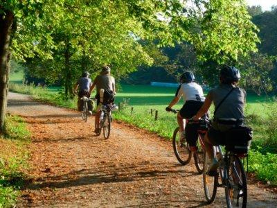 Verd Mar Activitats Alquiler de Bicicletas