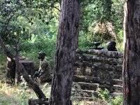 森林里的彩弹射击游戏