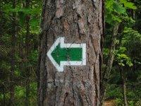 寻找信标信号路线