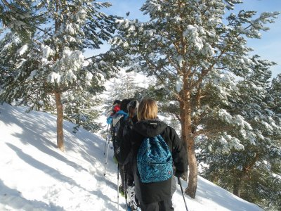 Turisnat Pirineus Raquetas de Nieve