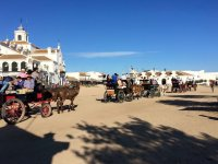 Con coches de caballos en El Rocio
