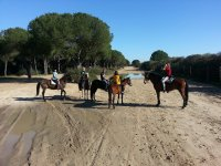 Standing with horses in Donana