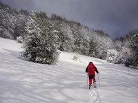 Raquetas de nieve en Berga