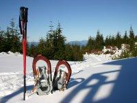 Raquetas y baston en la nieve