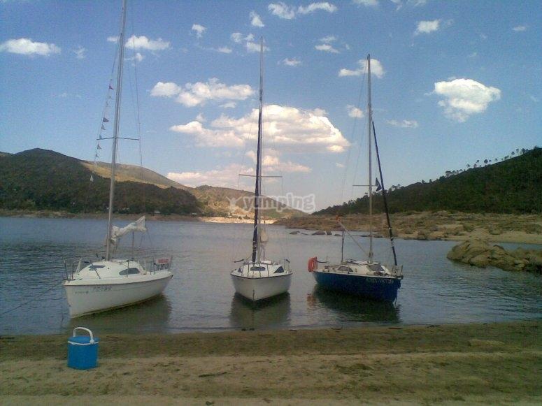 Le 3 barche