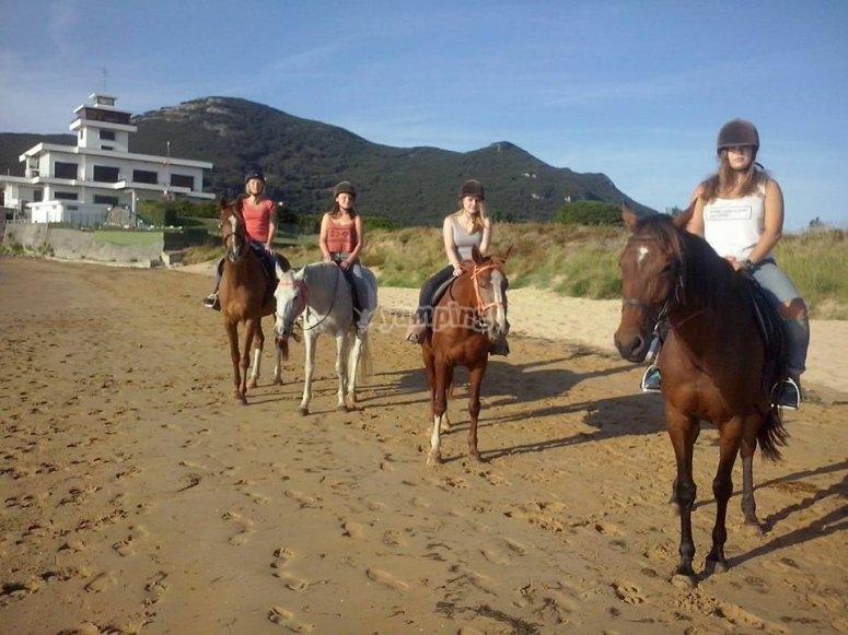 Chicas paradas con los caballos en la playa