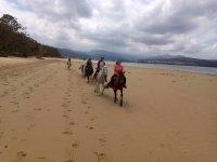 Ruta a caballo en la playa, en Laredo. 1 h