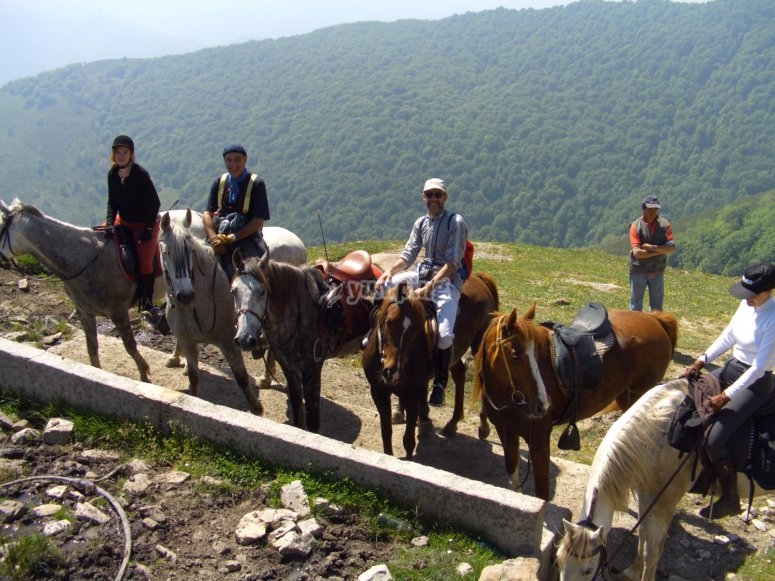 Horse riding routes in groups