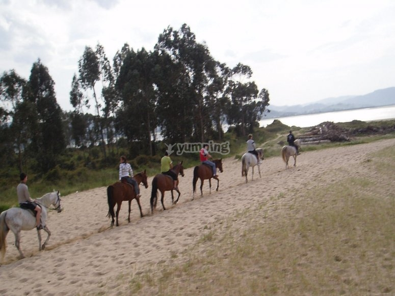 Horse riding route in Cantabria