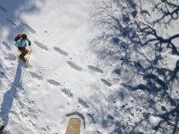 Excursion con raquetas en la nieve