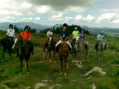 1 day horse ride tour: beaches and forests + lunch