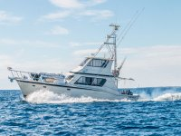 Excursión de pesca deportiva + Comida 5 horas