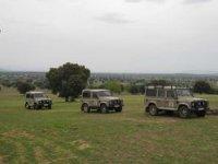 Realizamos rutas de safari