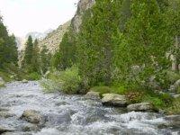 Pasea junto al río