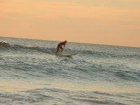 冲浪日落灯带转向